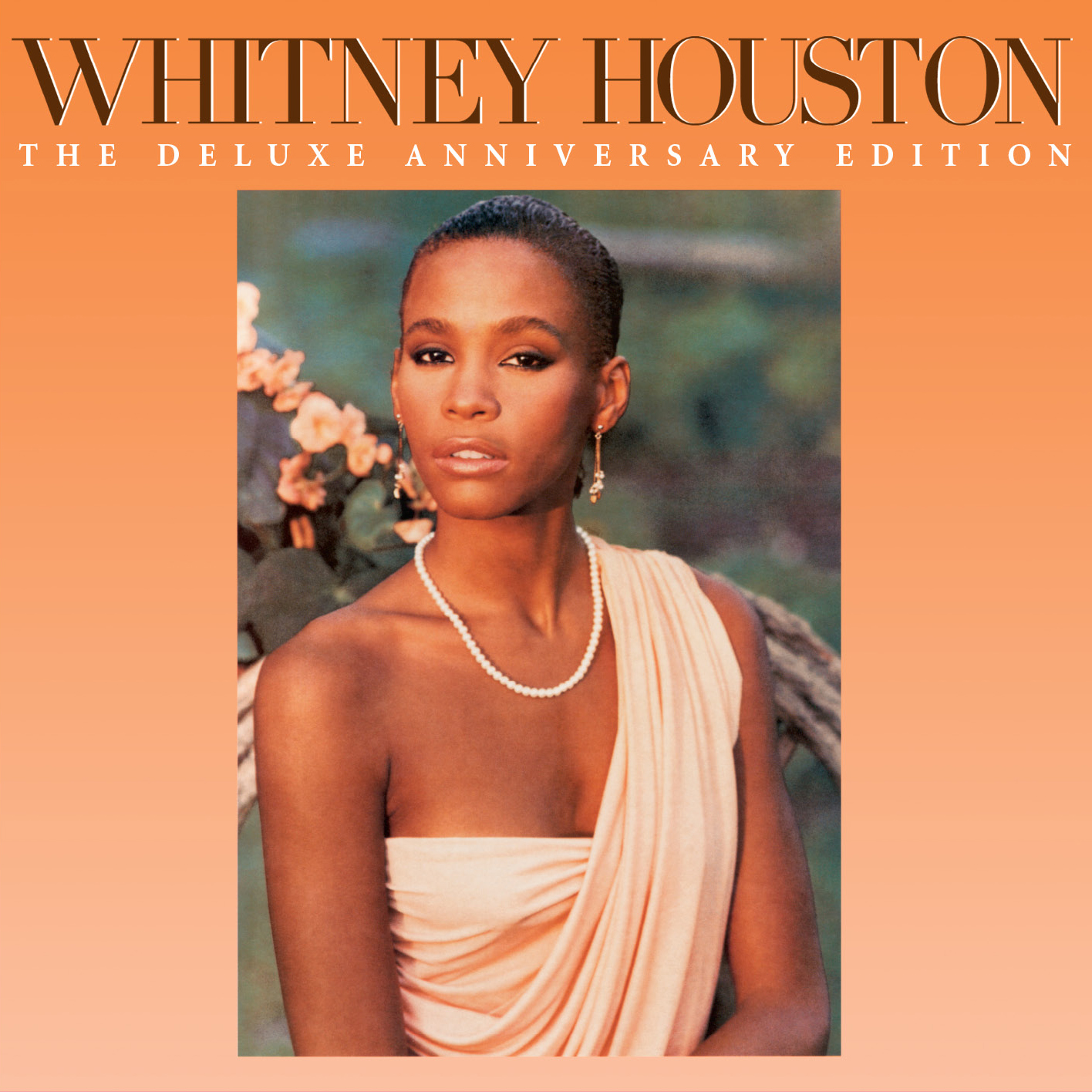 Whitney houston the deluxe anniversary edition hip hop for The whitney